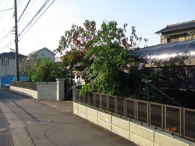 20111123-003.jpg