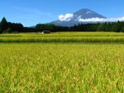 2011_09_18 中畑 田園風景