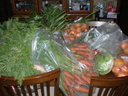 茨木県産お野菜