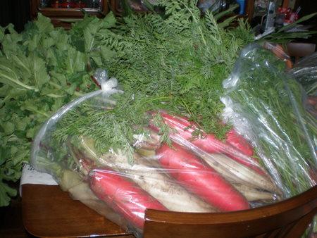 みずみずしいお野菜