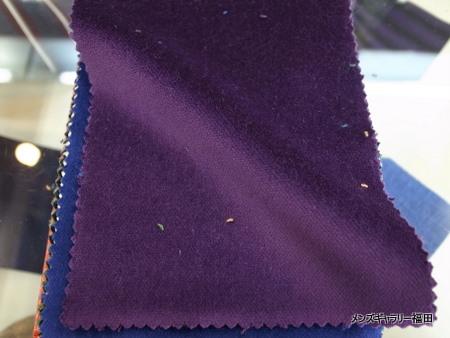 aubergine-ナス色のベルベット