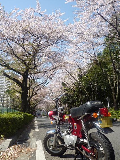 2011_0413戸田別館 0001