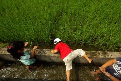 水路遊び1