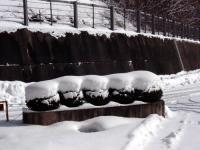 雪のマカロン