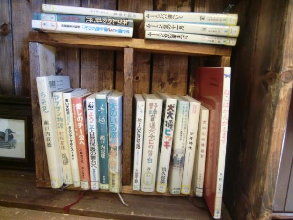 1104図書館祭りの本