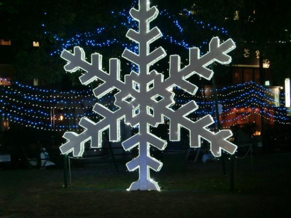 1211雪の結晶
