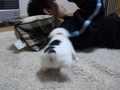 2010_0602_223402-CIMG0704.jpg