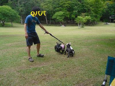 2010_0912_140608-CIMG1246.jpg