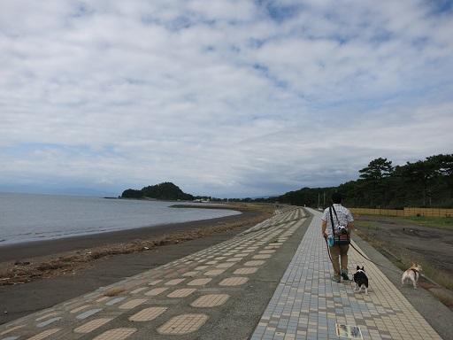 10-14沼津海岸散歩