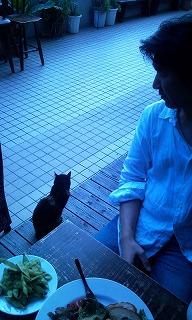Photo1346.jpg
