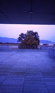 Photo1366.jpg