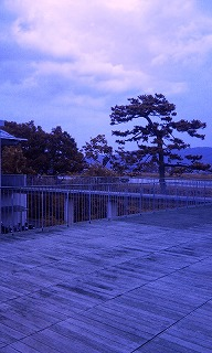Photo1368.jpg
