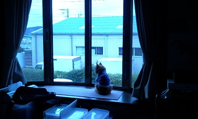 Photo1678.jpg
