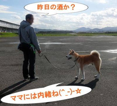 b_20131118_2.jpg