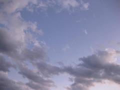 20101210.jpg
