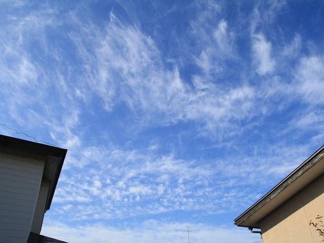 20110827 朝の雲1_R