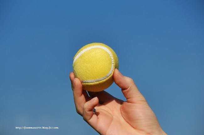 新しいボール