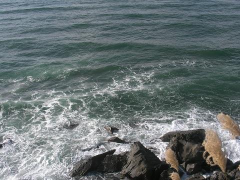 48日本海3
