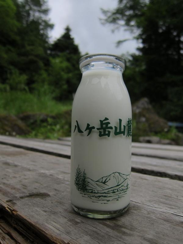 八ヶ岳95S 026