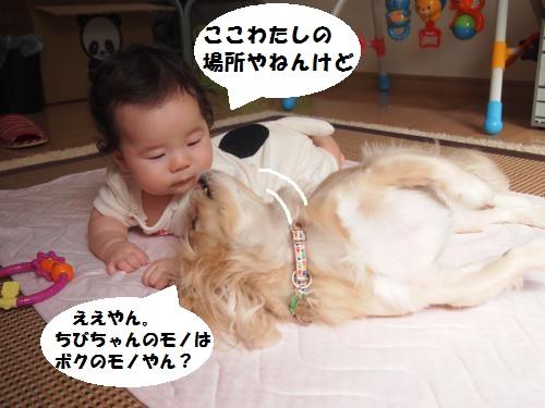 014_convert_20140924094253.jpg