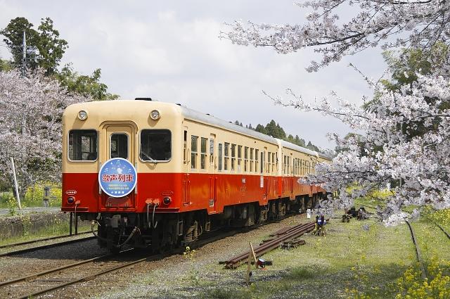 120415-7A-2.jpg
