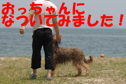 DSC_0116_20110708092921.jpg