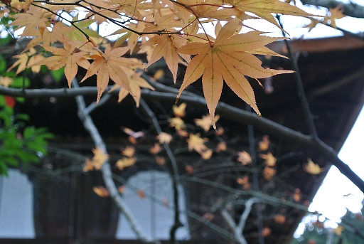 daimonnji093.jpg