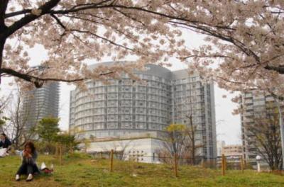 桜&病院3