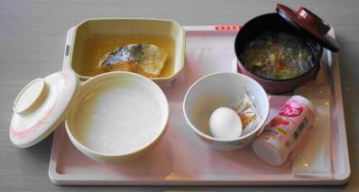 五分菜食8月3日昼食 全景