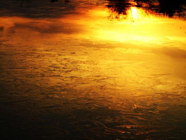 氷結の朝06