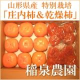 img_product_14331985944cde28c1d0b0d.jpg