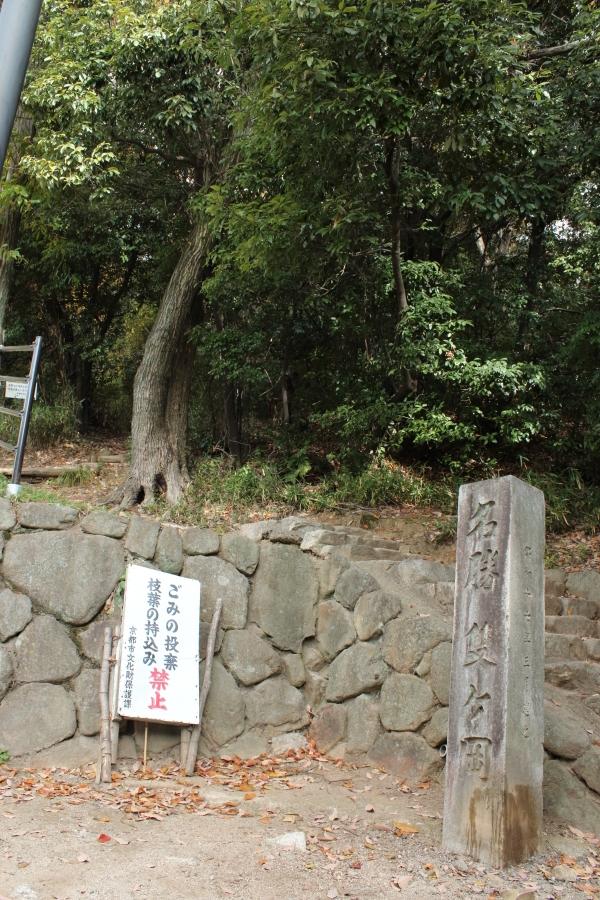 2013_12_08_0308.jpg