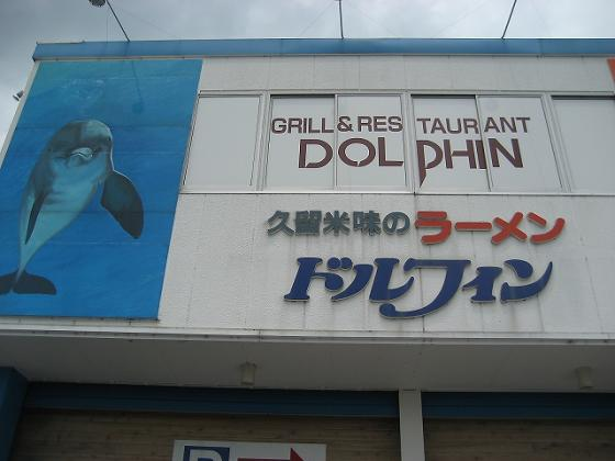 dolphin5soto_edited.jpg