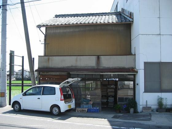 hashimotosoto2_edited.jpg