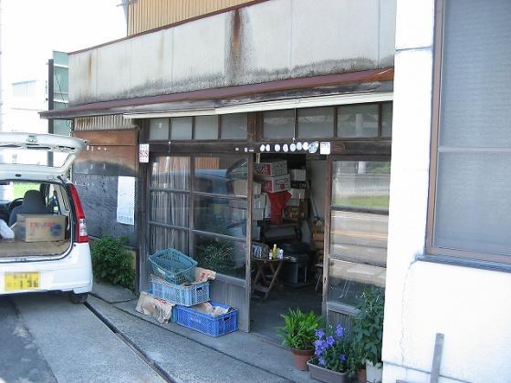 hashimotosoto3_edited.jpg