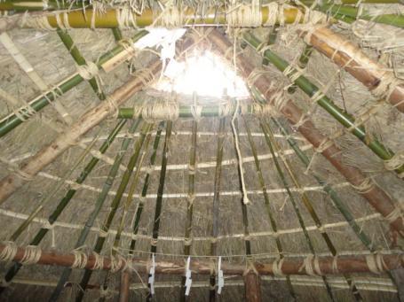 内部から天井