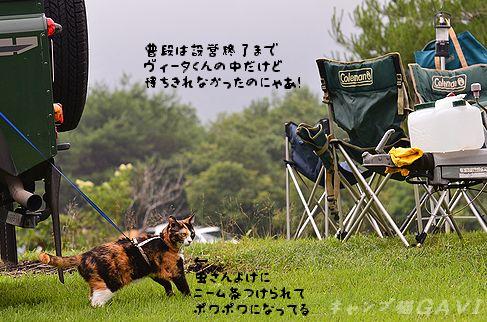110709_4779.jpg