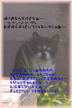 110722_5191.jpg