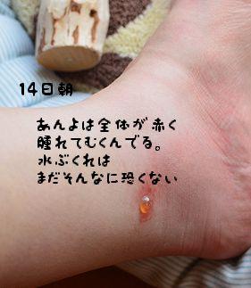 110814_6057.jpg