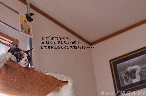 120701_6367.jpg