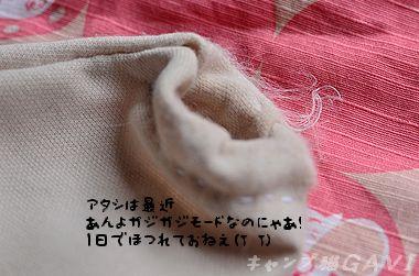 120707_6684.jpg