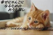 o0179012011289819822.jpg