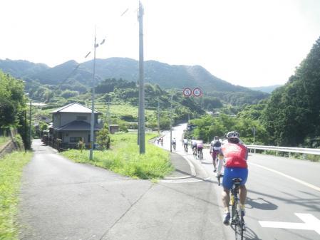 2010-08-07.jpg