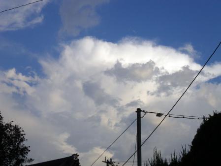 2010-09-05.jpg