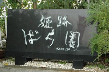 201111067.jpg
