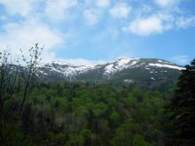 残雪の小至仏山から至仏山