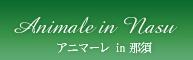 アニマーレ-那須