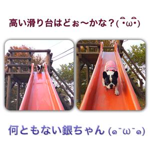 20121106-0007.jpg