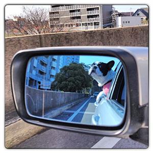 20121125-0002.jpg