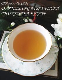 銀の芽紅茶店 ダージリン ファーストフラッシュ タルボ茶園